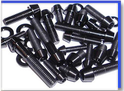 Carbon Steel Fasteners in Indonesia