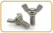 Monel K500 Thumb & Wing Screws