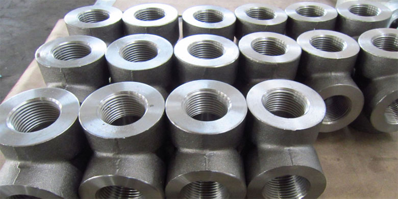 Stainless Steel 347/ 347H Forged Fittings